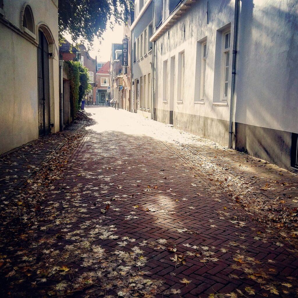 Herfst in de Kapellestraat in IJsselstein Liefs uit